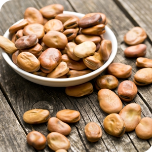 Whole Fava Beans